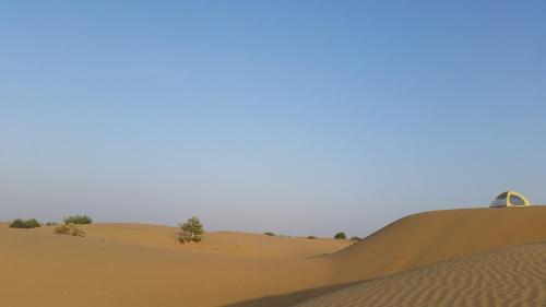 Bon Vivant Desert Campsite