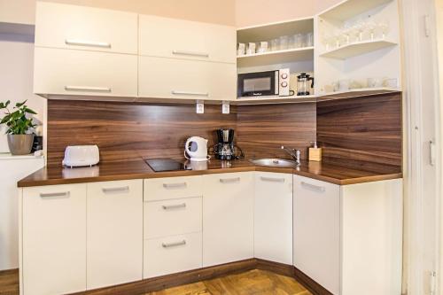 A kitchen or kitchenette at Michalska apartment by Ruterra