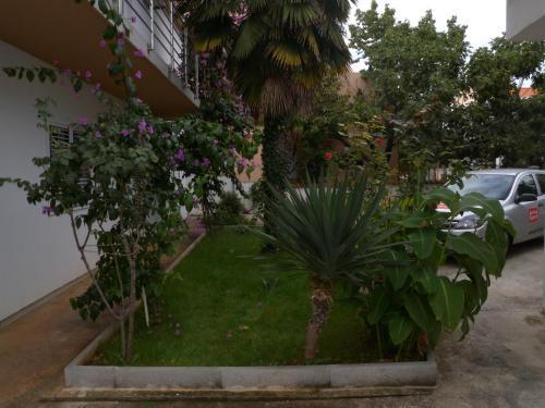 A garden outside Apartment Zadar 10