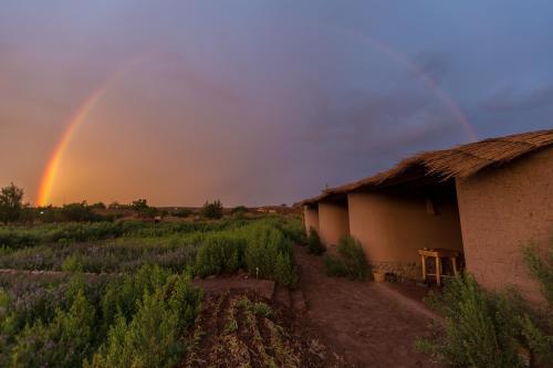 Eco-Lodge El Andinista
