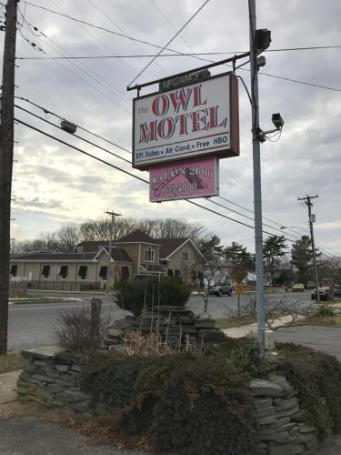 Owl Motel
