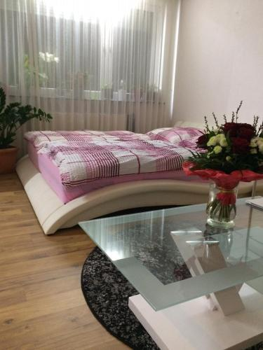 Deluxe Room with own balcony, in Private Apartment near Messe, Airport, Stuttgart