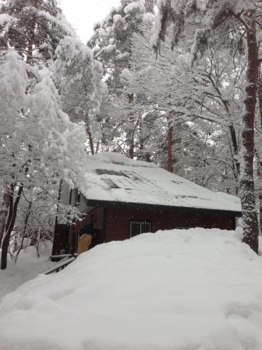 Shiro Cottage