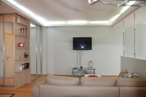 A television and/or entertainment center at Stylish apartment on Kutuzovskiy prospekt