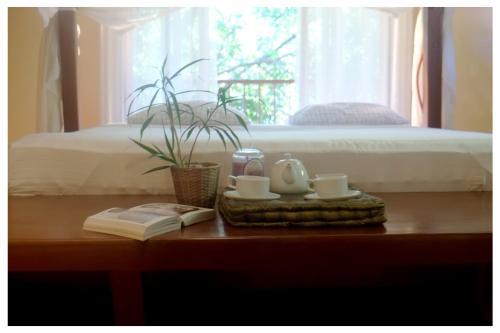 Serene Boracay Guesthouse