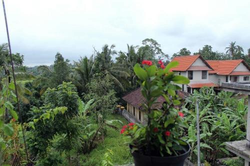 Aruna Cottage