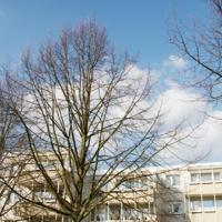 """Boarding House """"Herzogpark Celle"""""""