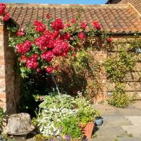 Clares Cottage