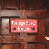 Tortuga Beach Apartment