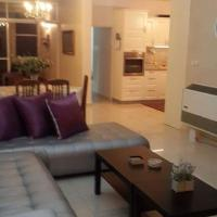 Amaizing Large apartment in Jzrael Vally