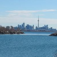 Modern Condo Minutes from CN Tower