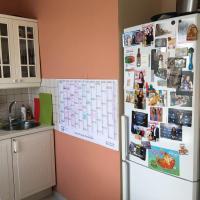 Apartment on Novodevichyi 10