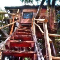 Volcano eco and treehouse
