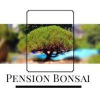 Penzion Bonsai