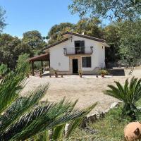 Locazione turistica Cycas