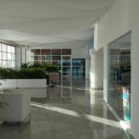 Oleo Cancun