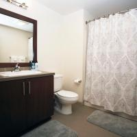 Pike's Place Luxury Condos 1BR/1BA