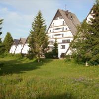 Flingermann Apartment 10 Schönwald