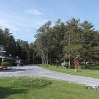 Pinecone Motel