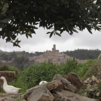 Monolocale Borgo Antico