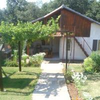 Guest House Milena Sinemorets