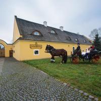 Dvůr Olšiny -Hotel and Horse-riding