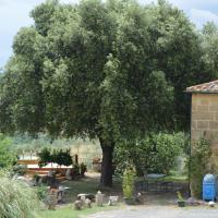 Agri-Bio Podere Santa Palmira