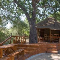 Lion Tree Top Lodge