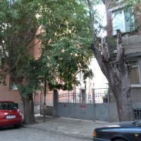 Apartment Asen Zlatarov