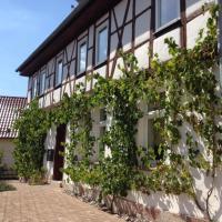 Ferienhaus Borntal