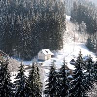 Zinkhaus - Waldheimat Alpl