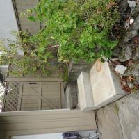 HLB Deluxe Garden Apartments