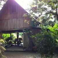 Cabuya Tours & Rentals
