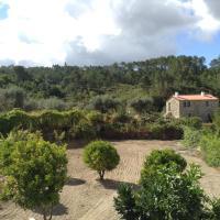 Orange Olives - Casa Verde