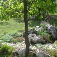 Privatni smještaj Romansa