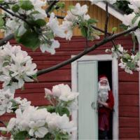 Joulupukin piilopirtti