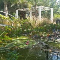 Kmo Yam In The Love Garden