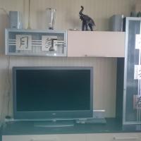 Apartment Voyskovitsy