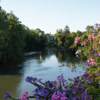 Au Petit Paradis - Strasbourg Sud
