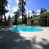 Mammoth Mountain Reservations Pet Friendly condos