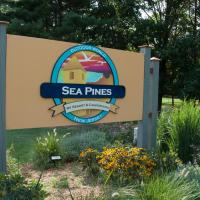 Sea Pines Loft Park Model 5