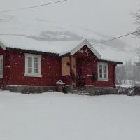 Telemark Inn - Hytte