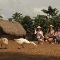 Sheridan Organic Farm and Eco Village