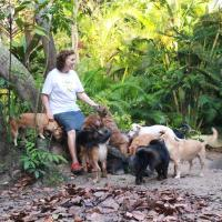 Nature & Dog-lovers Experience in Bahia