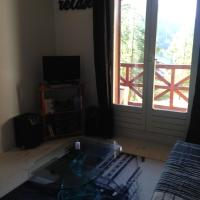 Studio Foux D'Allos Ski