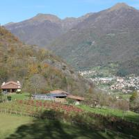 Bed and breakfast Il Mirtillo