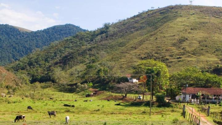 Encuentra el mejor lugar para montar a caballo en Gonçalves
