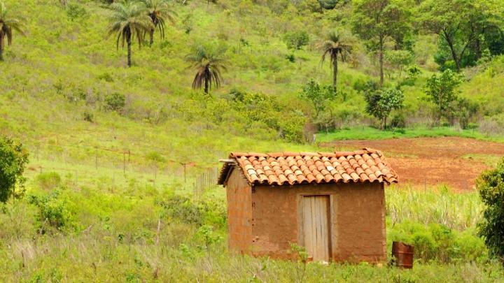 Encuentra el mejor lugar para la compra de obras de arte en Cunha