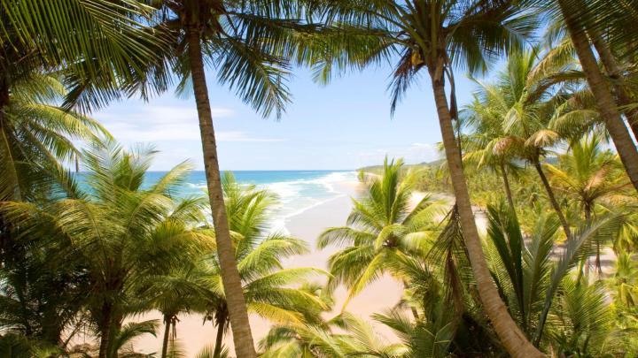 Encuentra el mejor lugar para la cocina vegetariana en Caraíva