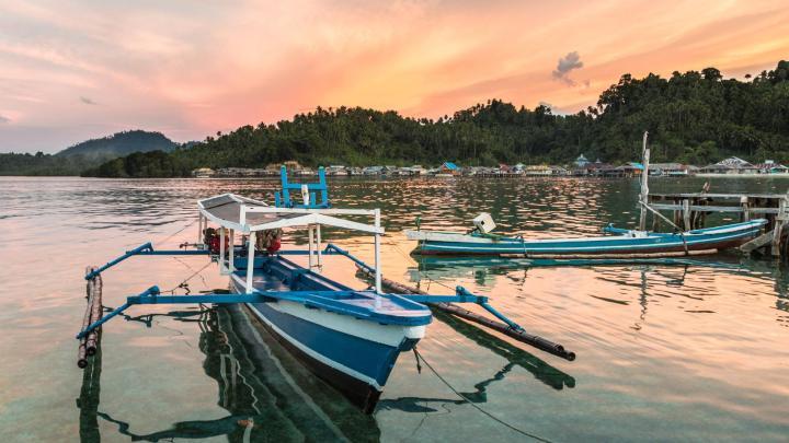 Encuentra el mejor lugar para bucear en arrecifes en Tanahwangko